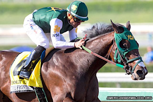 Kuda Bolt d'Oro Yearlings Diprediksi Semakin Tinggi Nilai Jualnya