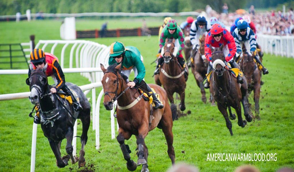 Mengenal Sejarah Balapan Kuda di Irlandia