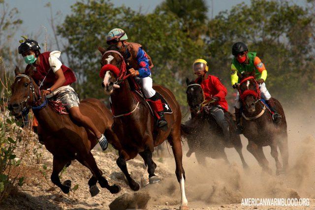 Pengertian Serta Sejarah Joki Pacuan Kuda