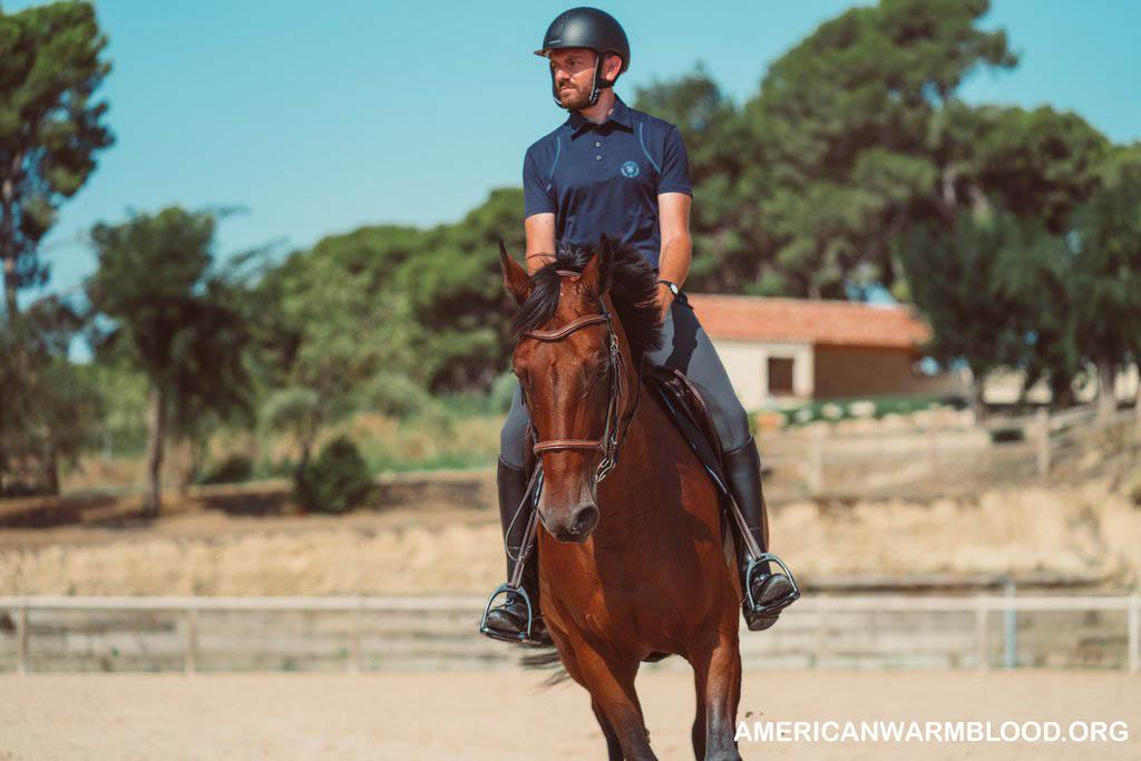 Panduan Para Pakar Buat Melindungi Kuda Agar Senantiasa Sehat