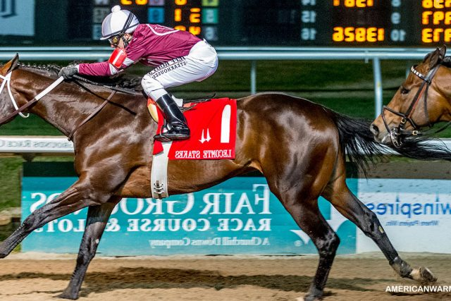 Penampilan Yang Sangat Menarik Dari Kuda Midnight Bourbon di Runhappy Travers
