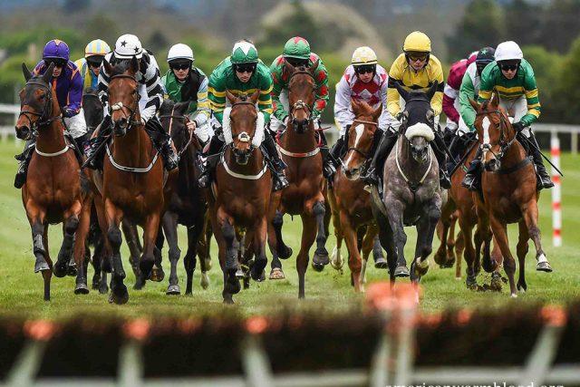 Kompetisi Pacuan Kuda Terbaik Dunia
