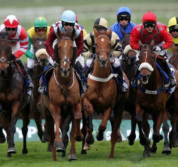 3 Kuda Pacuan Tercepat Di Dunia yang digunakan pada Federasi Pembiakan Kuda Olahraga Pacuan