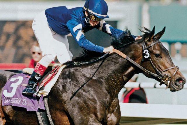 Mengenal Kuda Favorite Trick Yang Sangat Luar Biasa